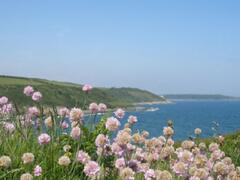a view from the coastpath nearby