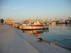 the fishing port . Santa Pola