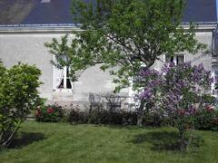 Property Photo: cottage and garden