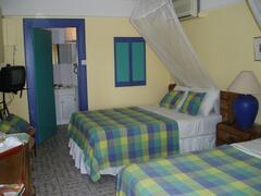 Room Guava
