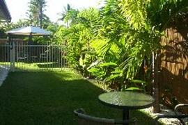 Lush tropical gardens in Cairns holiday house