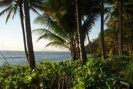 Trinity Beach, Cairns, Australia