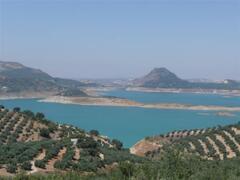 Lake Iznajar