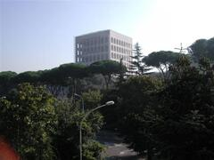 VIEW FROM THE BUILDING