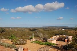 garden and views