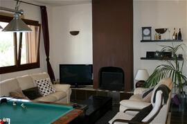 Living room with pool billard