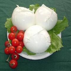 The true buffalo mozzarella is a typically local product.  You can taste, buy and visit a cheese factory.