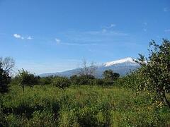 Property Photo: Mount Etna