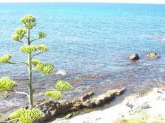 E Tro rock beach