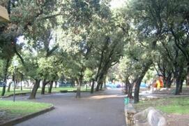 The pubblic garden