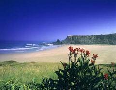 Beach in Area