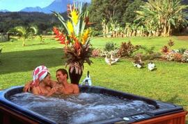 Enjoy TWO Private Jacuzzi\'s on Property
