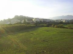 Back terrcae view