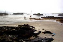 Beachs locally.