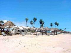 Other beach houses.