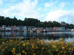 Tobermory (Balamory to little ones)