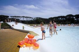 Property Photo: Pool Slide