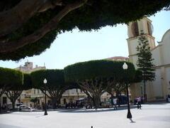 Almoradi square