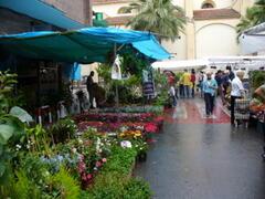 Almoradi Saturday market