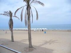 Guadamar beach