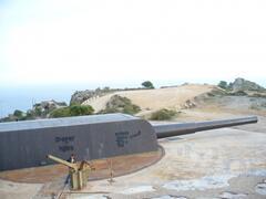 Cartagena guns