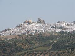 View of the town of Olvera