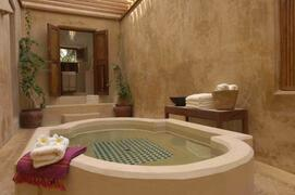 Property Photo: Indugle yourself in a starbath in the plunge pool.