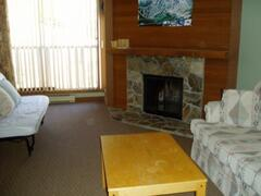 Property Photo: Lounge area with Log Burning Fireplace