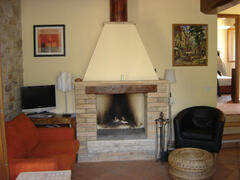 Property Photo: fireplace