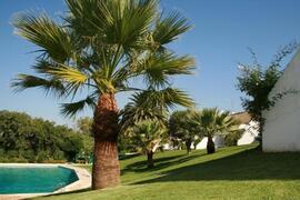Property Photo: Mouragolf Villa - Outside