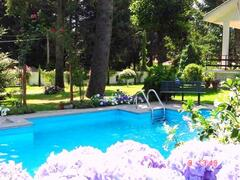 Splash Pool & Garden