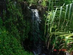 Waterfall next to our house