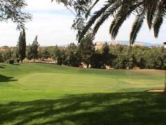 Alto Golf