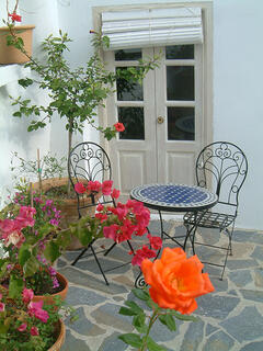 Property Photo:  Garden