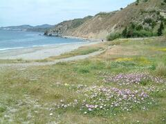 Nearby Natural Beaches