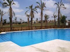 Property Photo: shared pool
