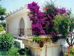 Property Photo: Villa Clara - San Pietro In Bevagna