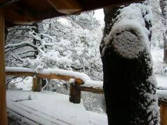 Snowed Balconies