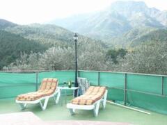 comfortable sun loungers
