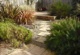 Mature back garden