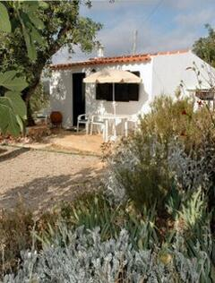 Property Photo: Casa de Porco
