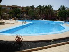 Property Photo: Freeform swimming pool