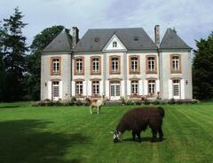 Property Photo: Le Castel- chateau guest house and gites
