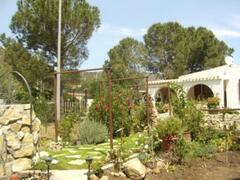 view fom garden