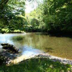 Property Photo: River Lynher