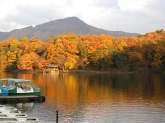 Beautiful Takaragaike in November