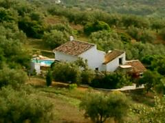 Nestled in a olive grove