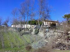 Villa in Late Winter