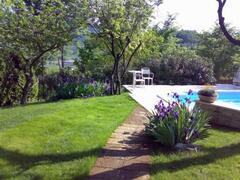 Tufa-Stone Path to Pool