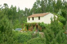 Property Photo: Mara's Cottage